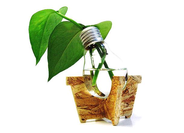 Reciclar bombilla recycle light bulb