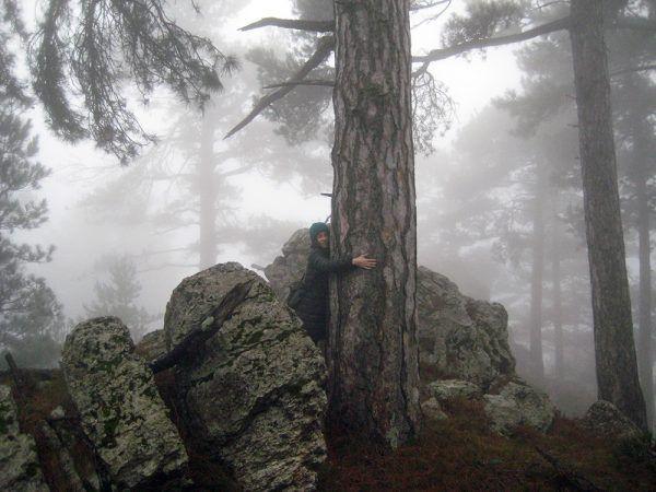 Fotografía de una persona participando en un baño de bosque. Imagen: Ports Experience.